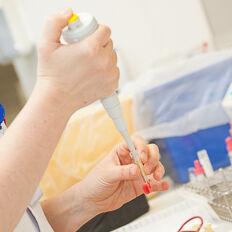 Hematologie Thumb