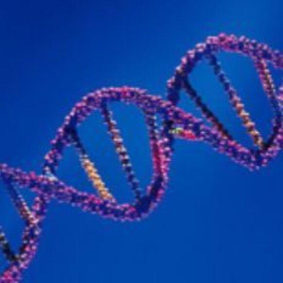 Genetica Thumb 2 F92098E74Fe144976771Ee5D49F11062